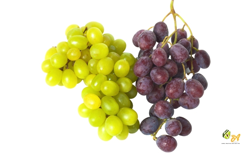 image of Are Grapes keto-friendly low carb