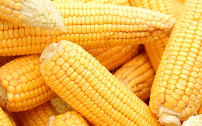 image of Can I Have Corn On The Keto Diet