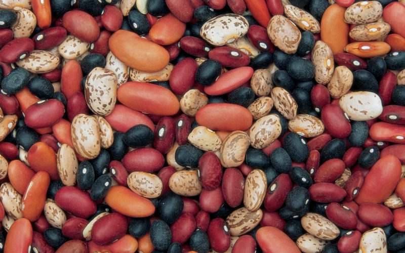 image of Not Low Carb Keto Friendly Bean