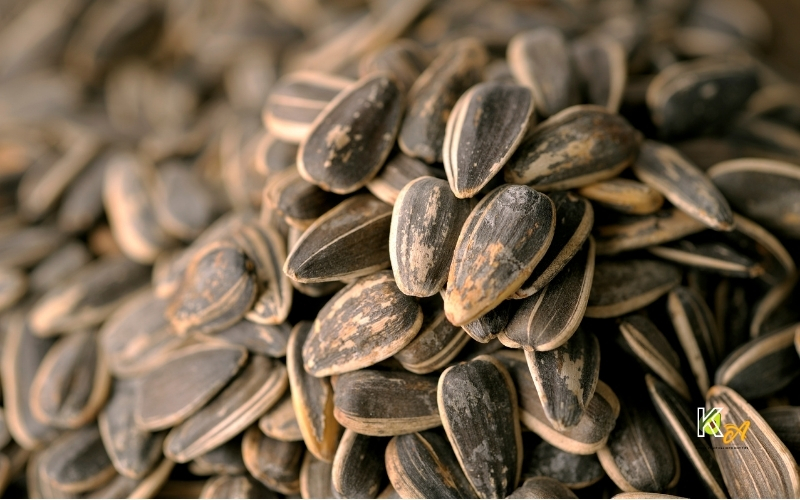 image of how to eat sunflower seed
